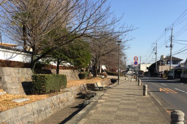 『玉岡通り』の画像