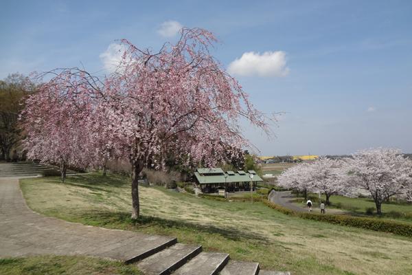 『宮山ふるさとふれあい公園』の画像