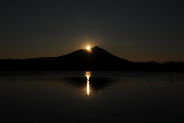 『母子島遊水地』の画像