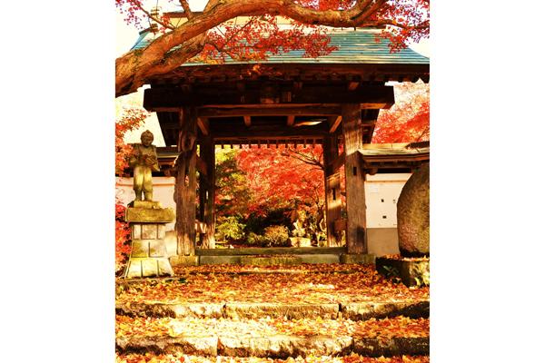 『薬王寺1』の画像