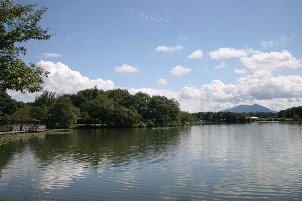 『上野沼3』の画像