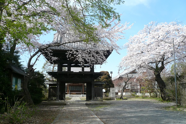 『華蔵寺(さくら)』の画像