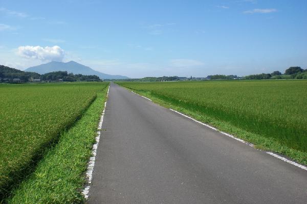 『田園(2)』の画像
