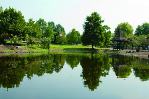 『『きぬ川ふれあい公園』の画像』の画像