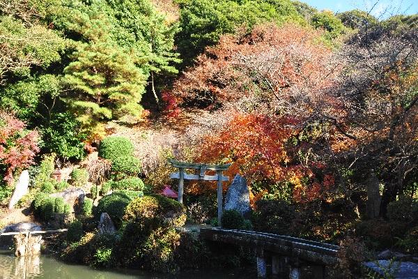 『椎尾山薬王院(秋)』の画像