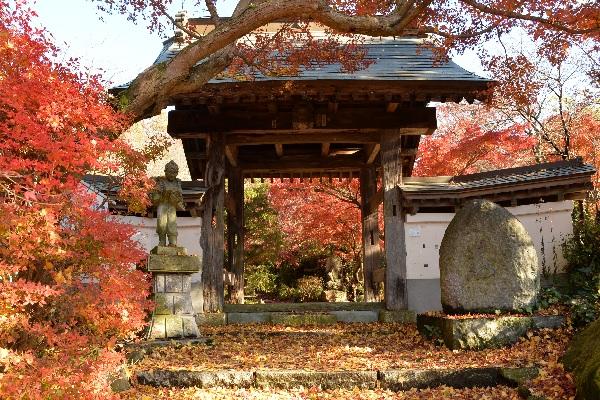 『薬王寺(秋)』の画像