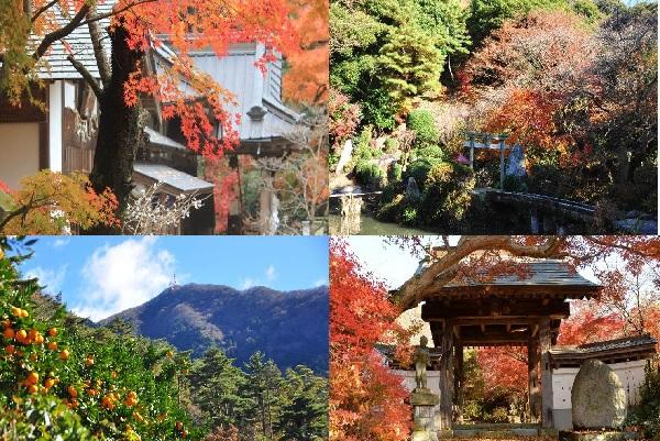 『秋の桜川さんぽ』の画像
